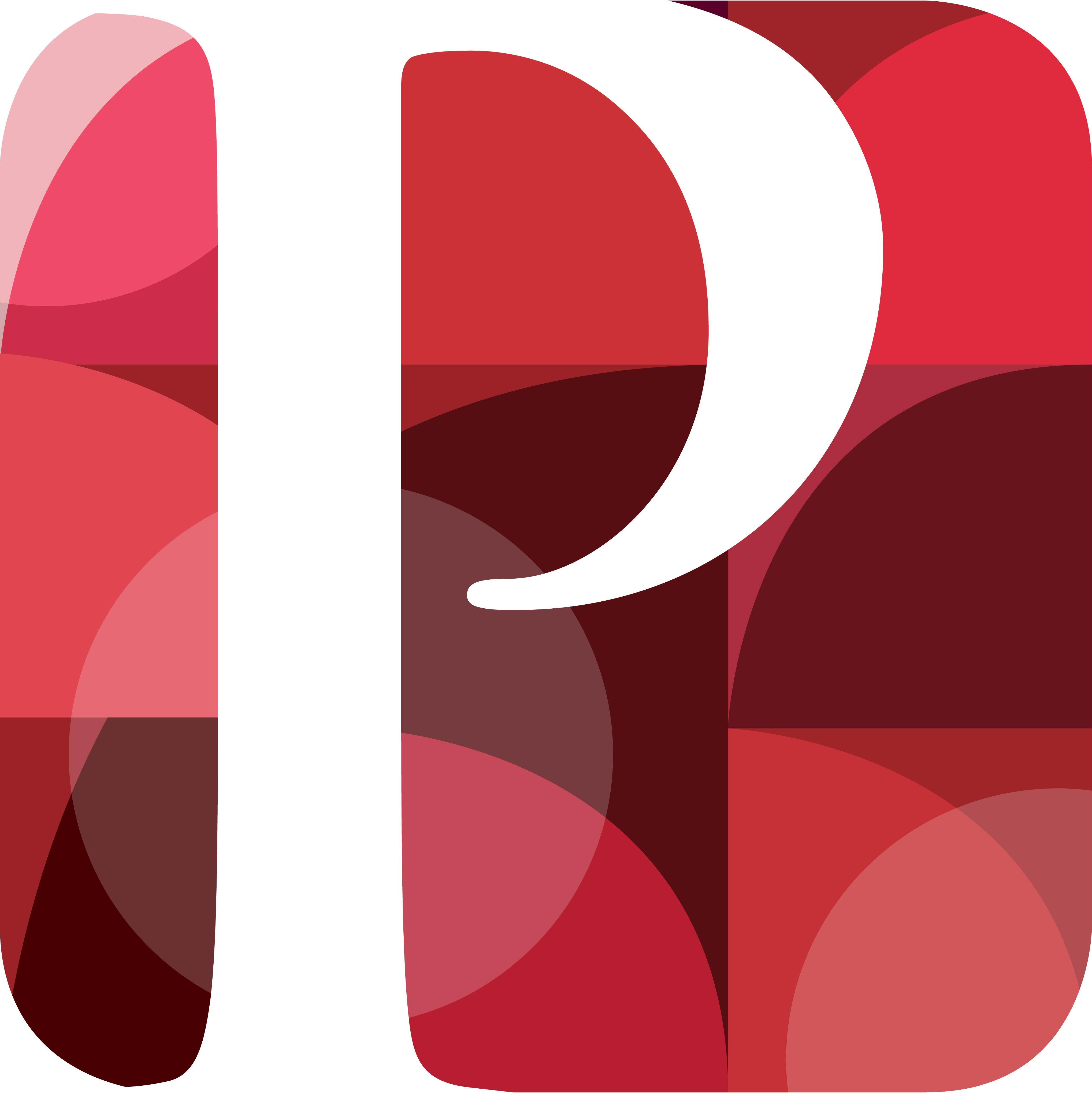 Pretura Consulting Icon